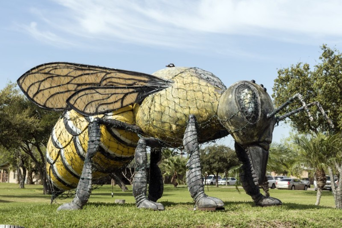 Killer bee statue, Hidalgo, Texas