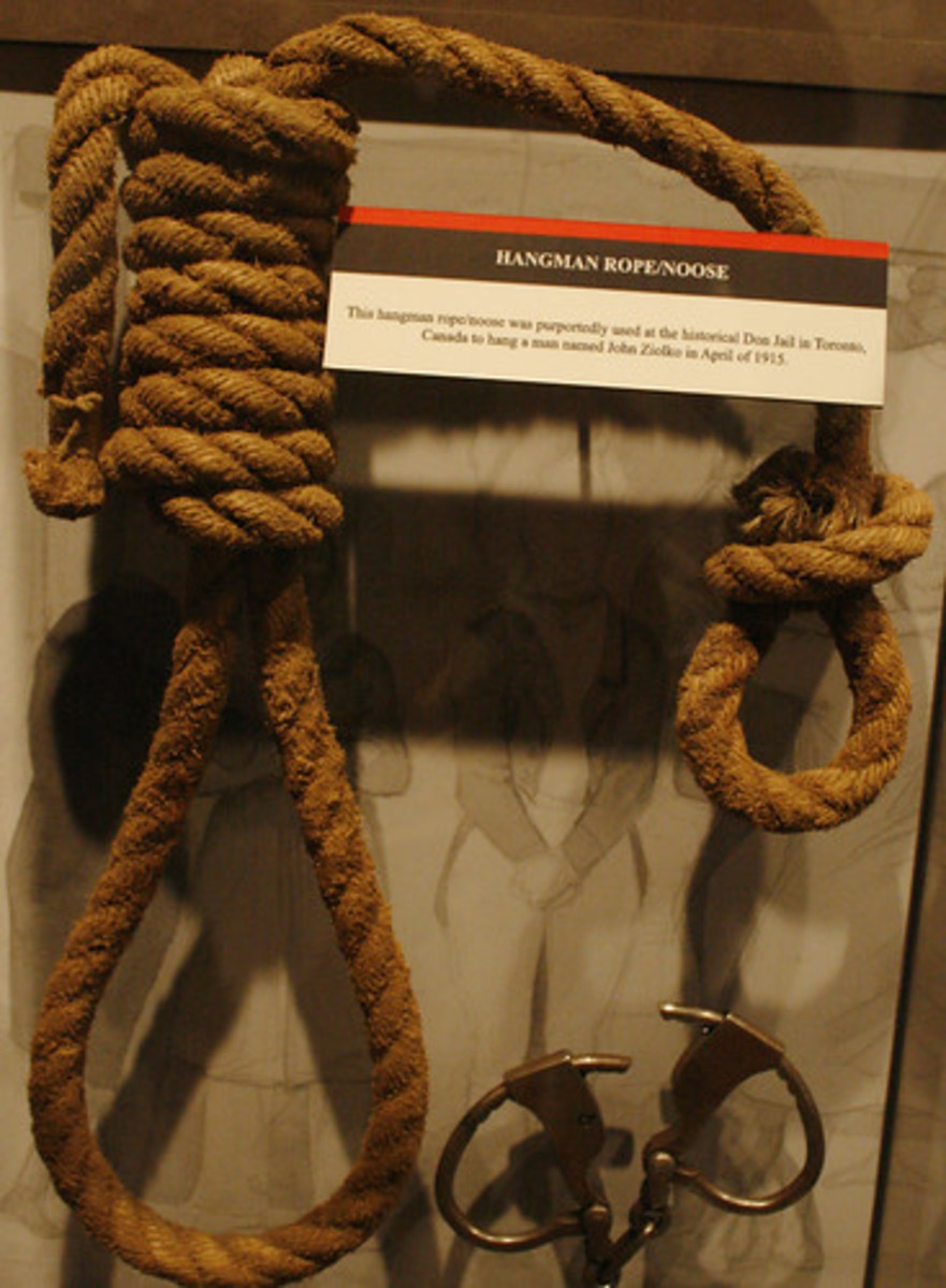 An example of a hangman's rope.