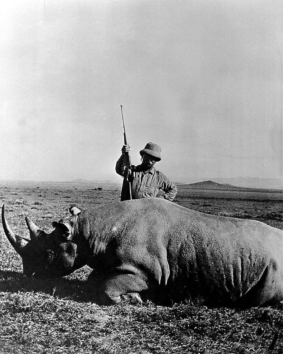 Theodore Roosevelt bags a rhinoceros in 1909.
