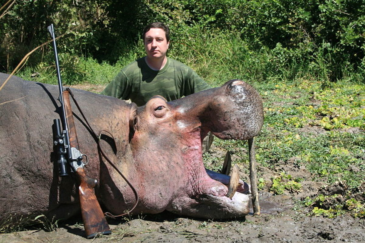 A hunter poses for a selfie with a dead hippo.