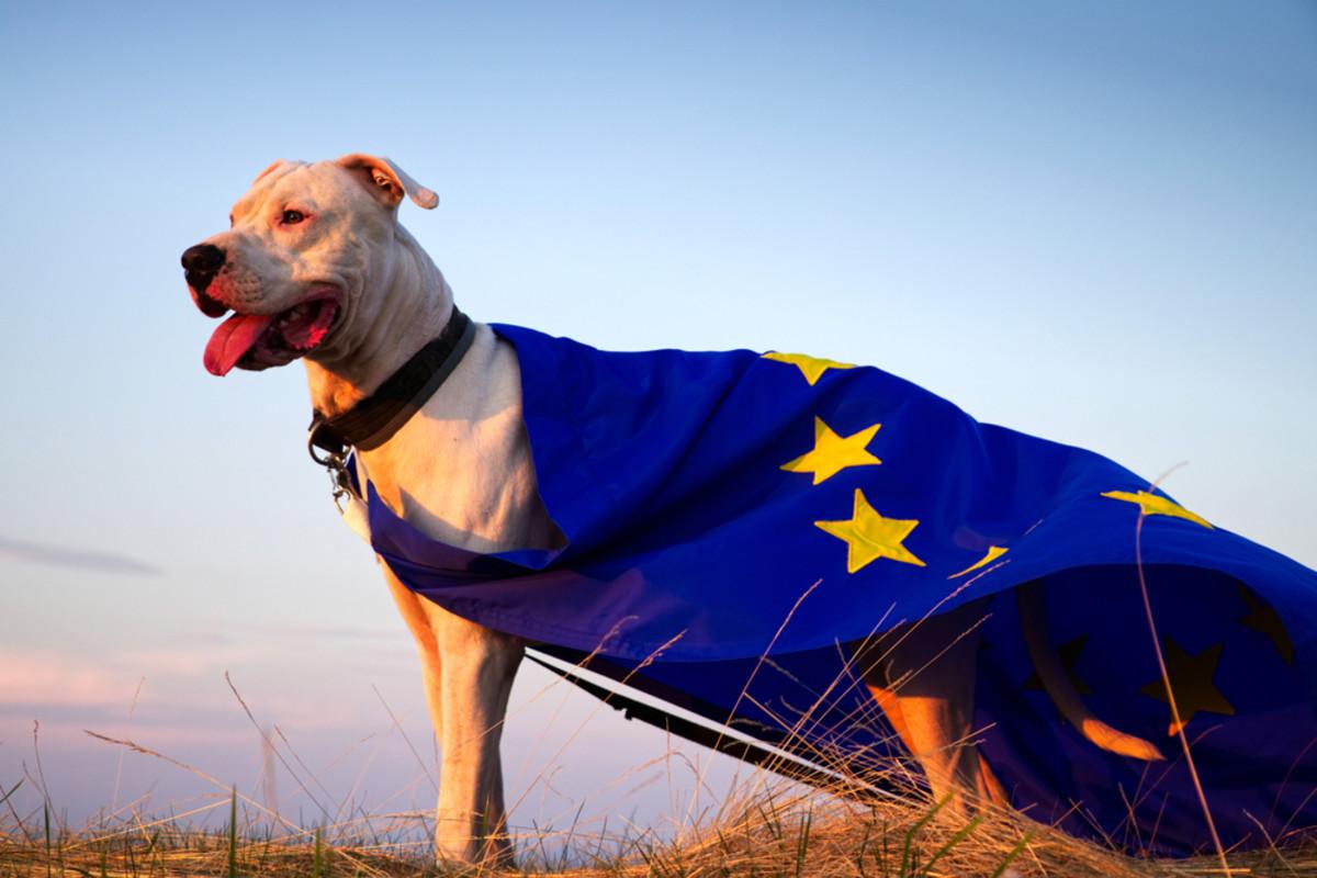 EU Dogo