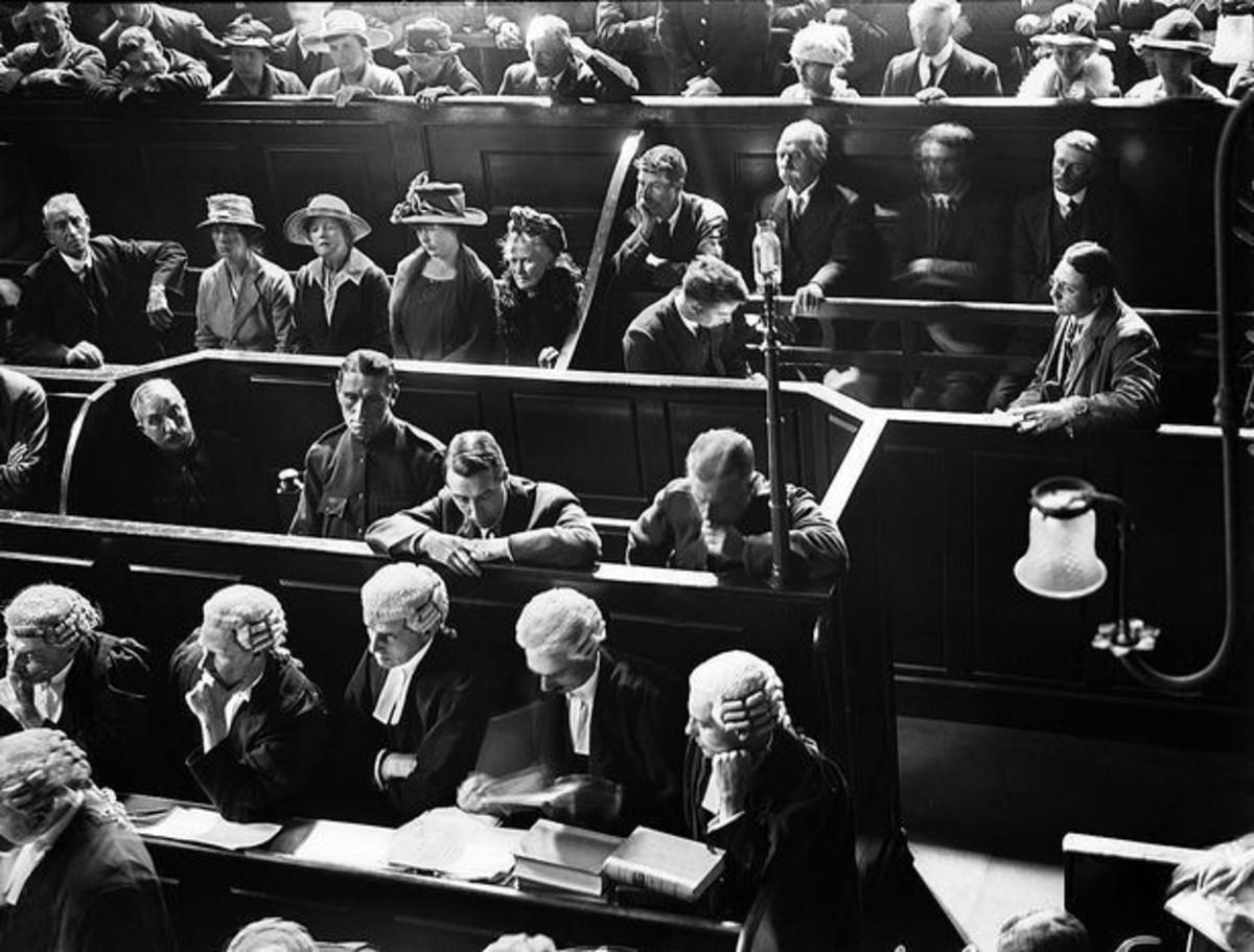 Light in Court