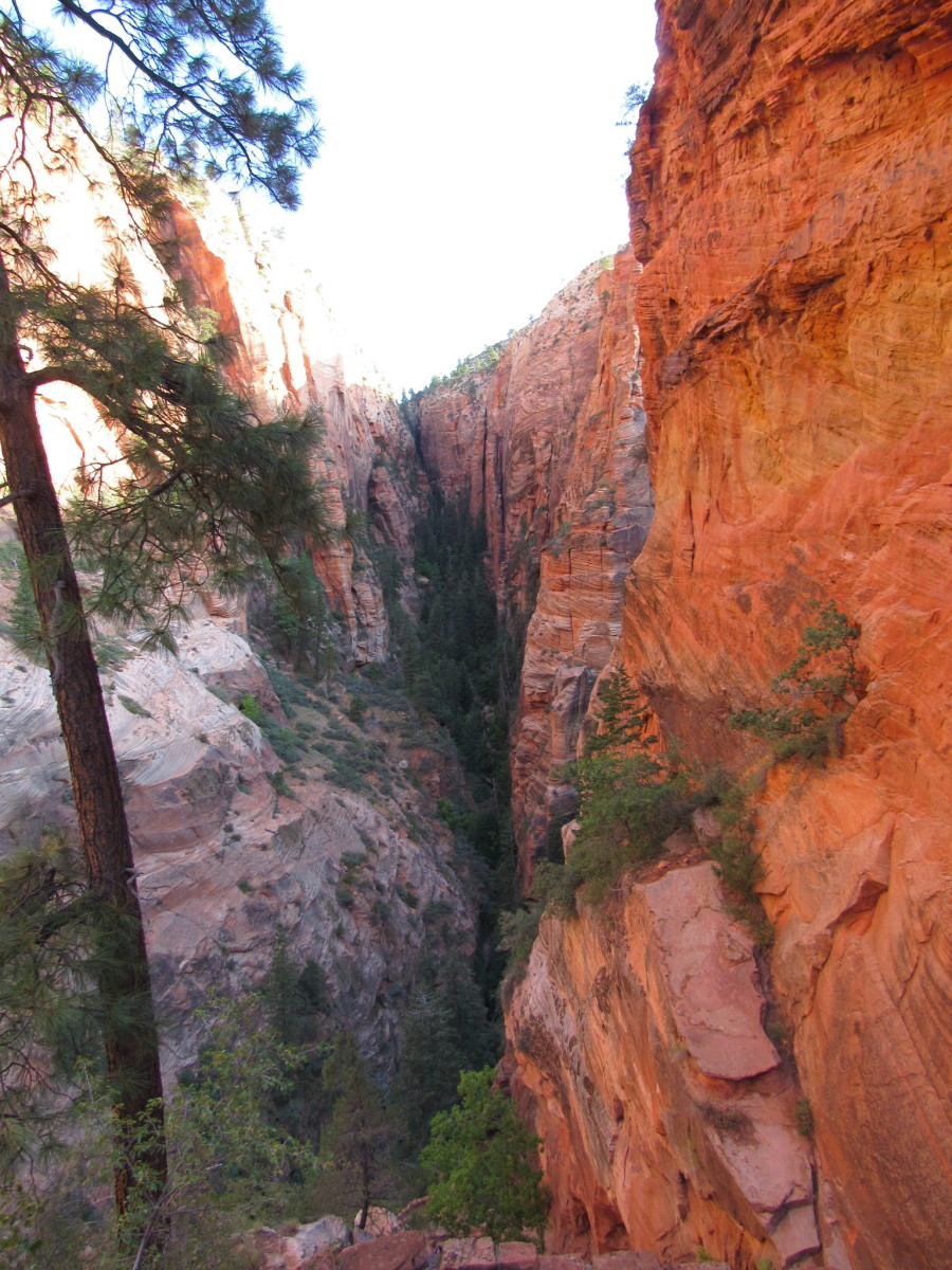 Refrigerator Canyon from the West Rim Trail