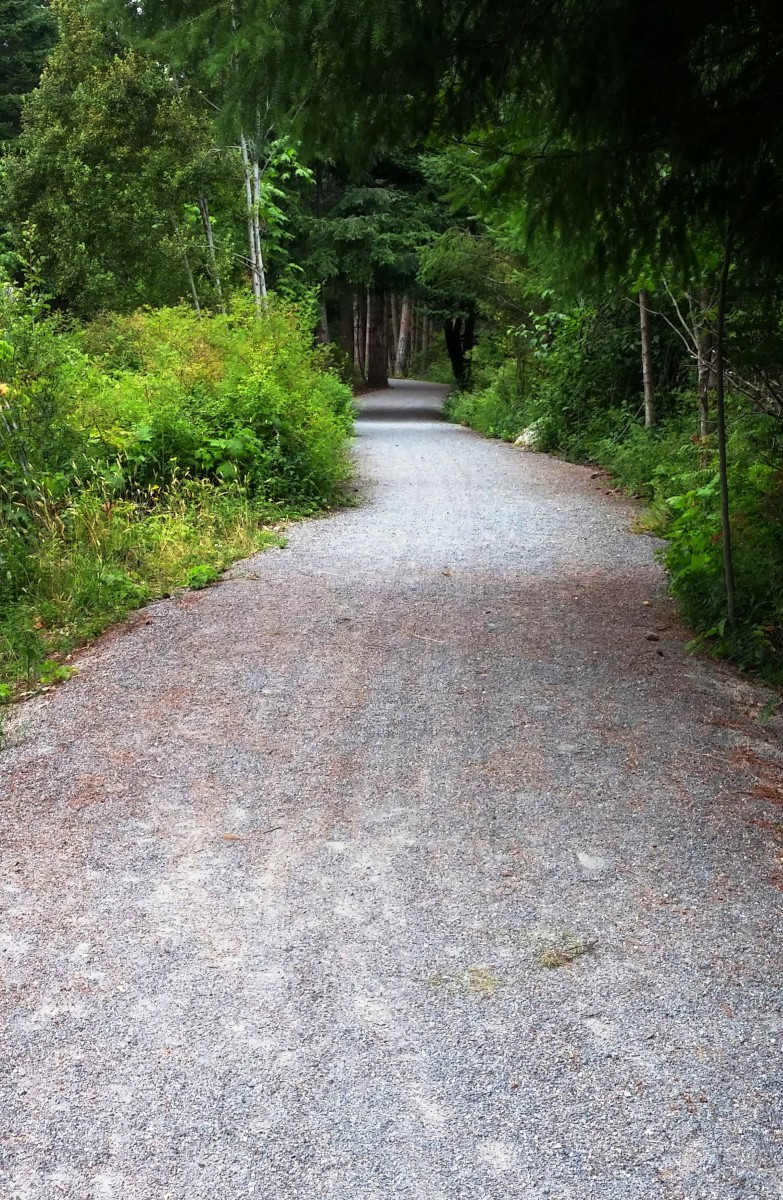 A new walking/cycling trail that we knew nothing about runs just between the old railroad and the commercial in between.