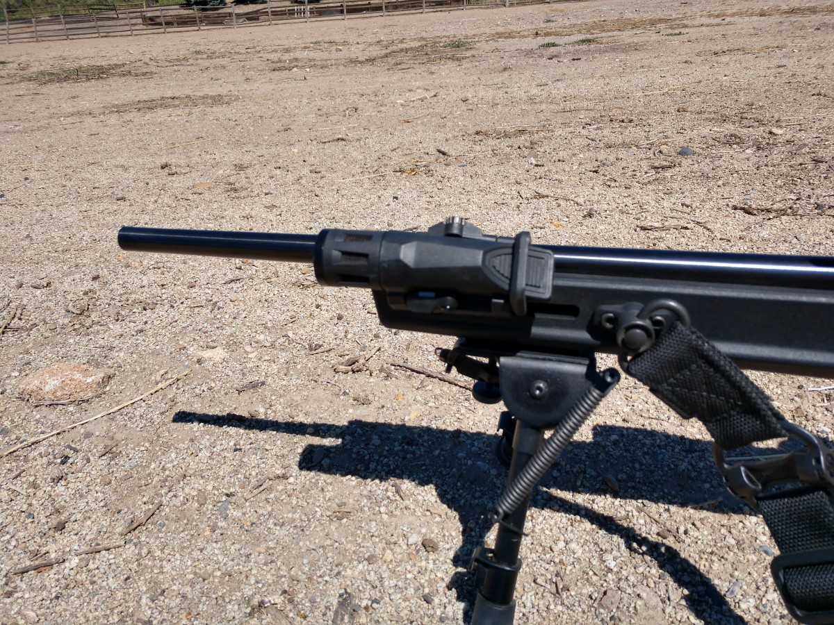 Sling swivel, InForce light, and bipod.