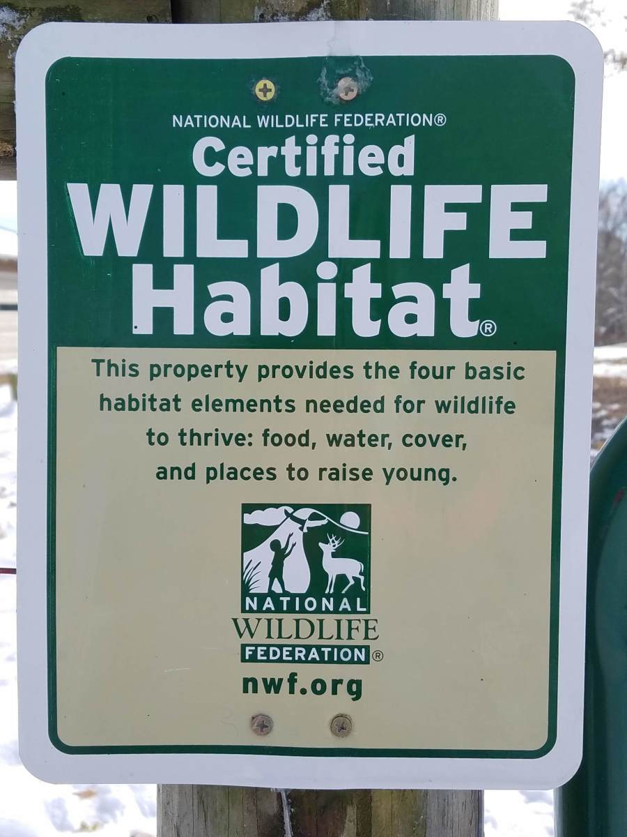 As a Certified Wildlife Habitat, we do not allow hunting on our property.