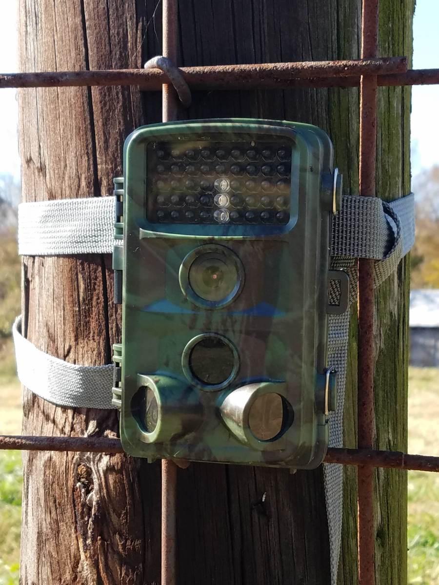 Toguard H45 Hunting Camera