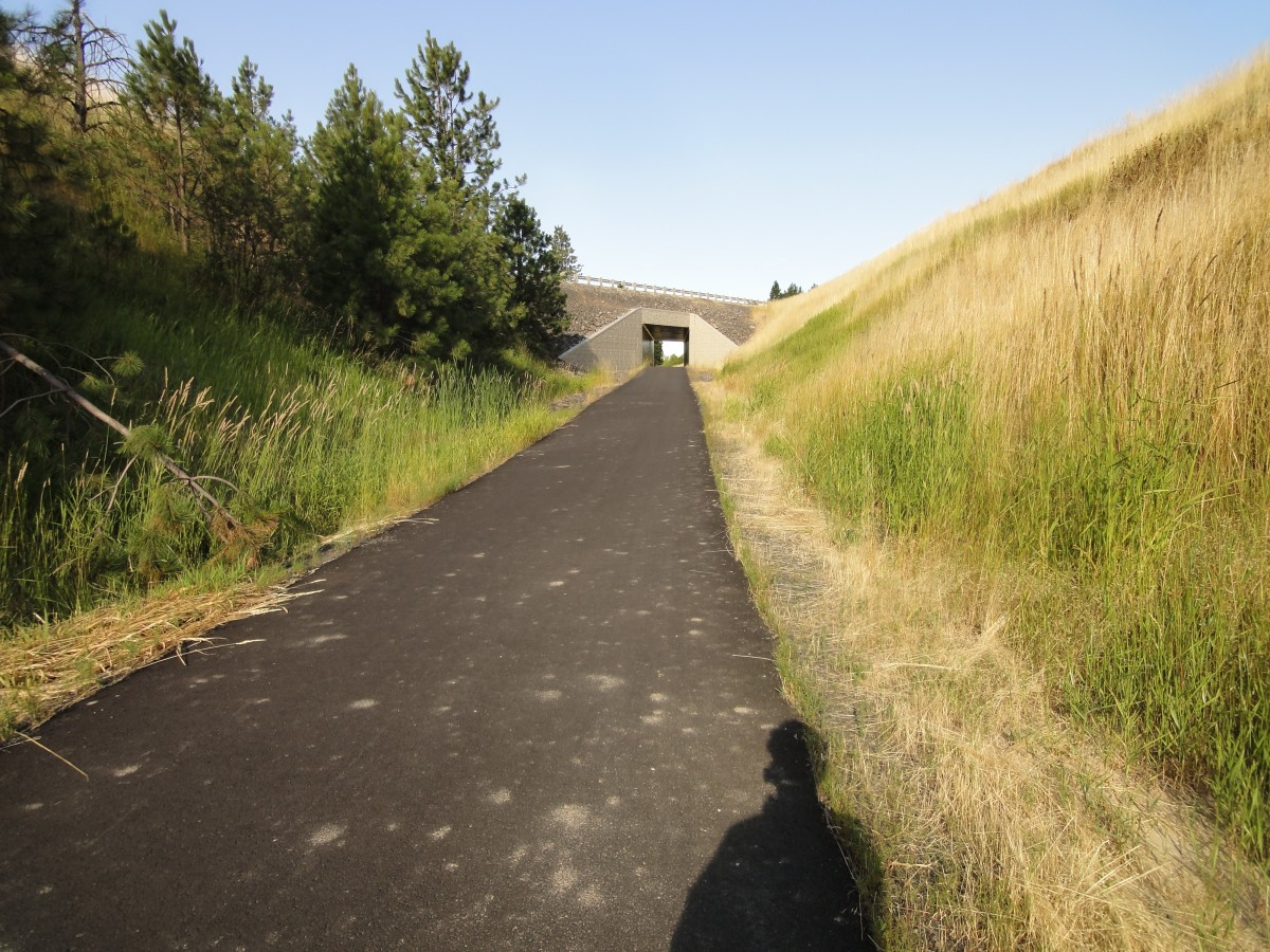 Latah Trail Tunnel, Mile Marker 6 or so headed to Troy, Idaho