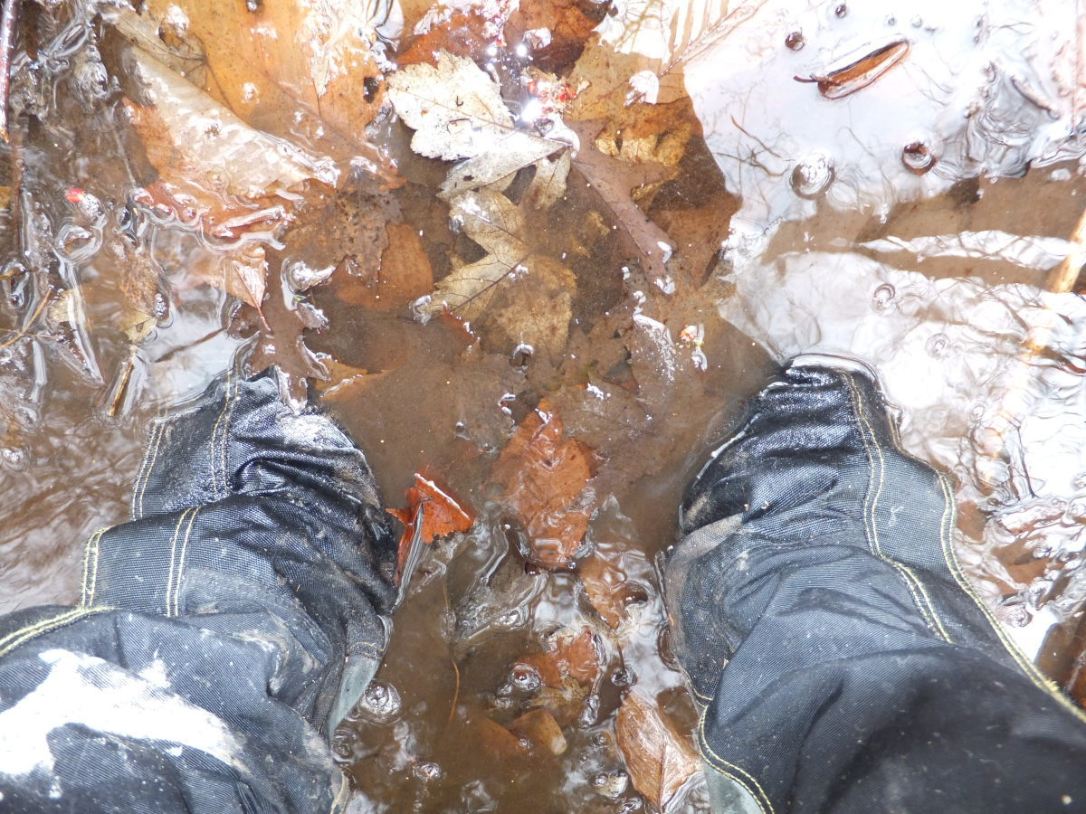 Yes, I am wearing the Gypsum in the picture.  After walking in water 6-inches over the top of the shoe, my feet did get wet.