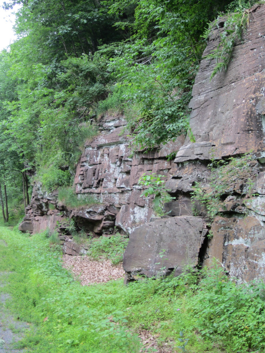 Sheer rock wall along Pine Creek Rail Trail south of Waterville, PA