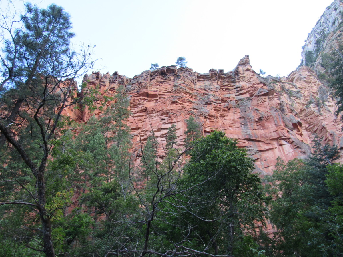 Sheer sandstone walls along the West Fork Trail.