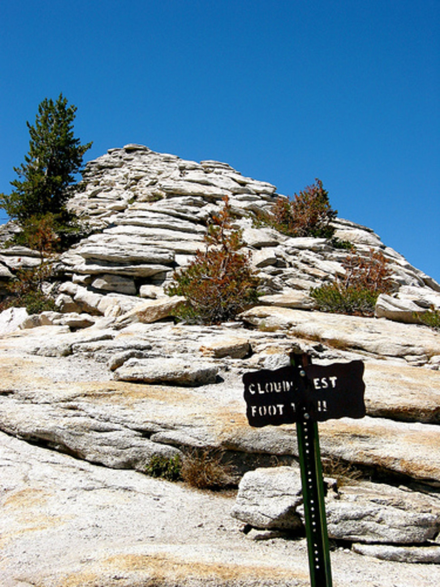 The final trail sign, directing you the last hundred yards to the summit.