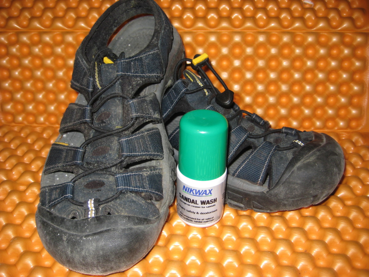 Abused and neglected Keen Newports.