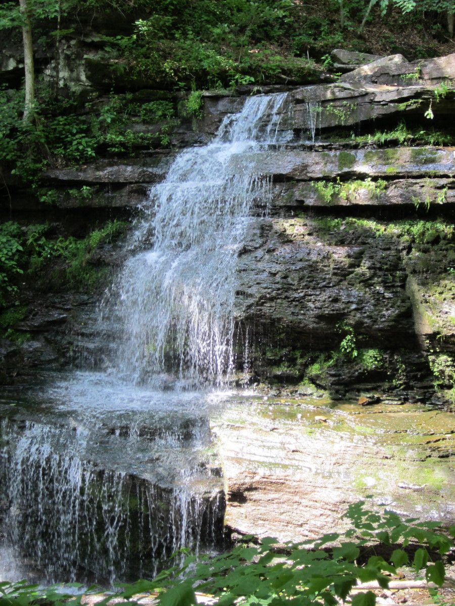 Waterfall on Little Fourmile Run from Turkey Path, Leonard Harrison State Park.
