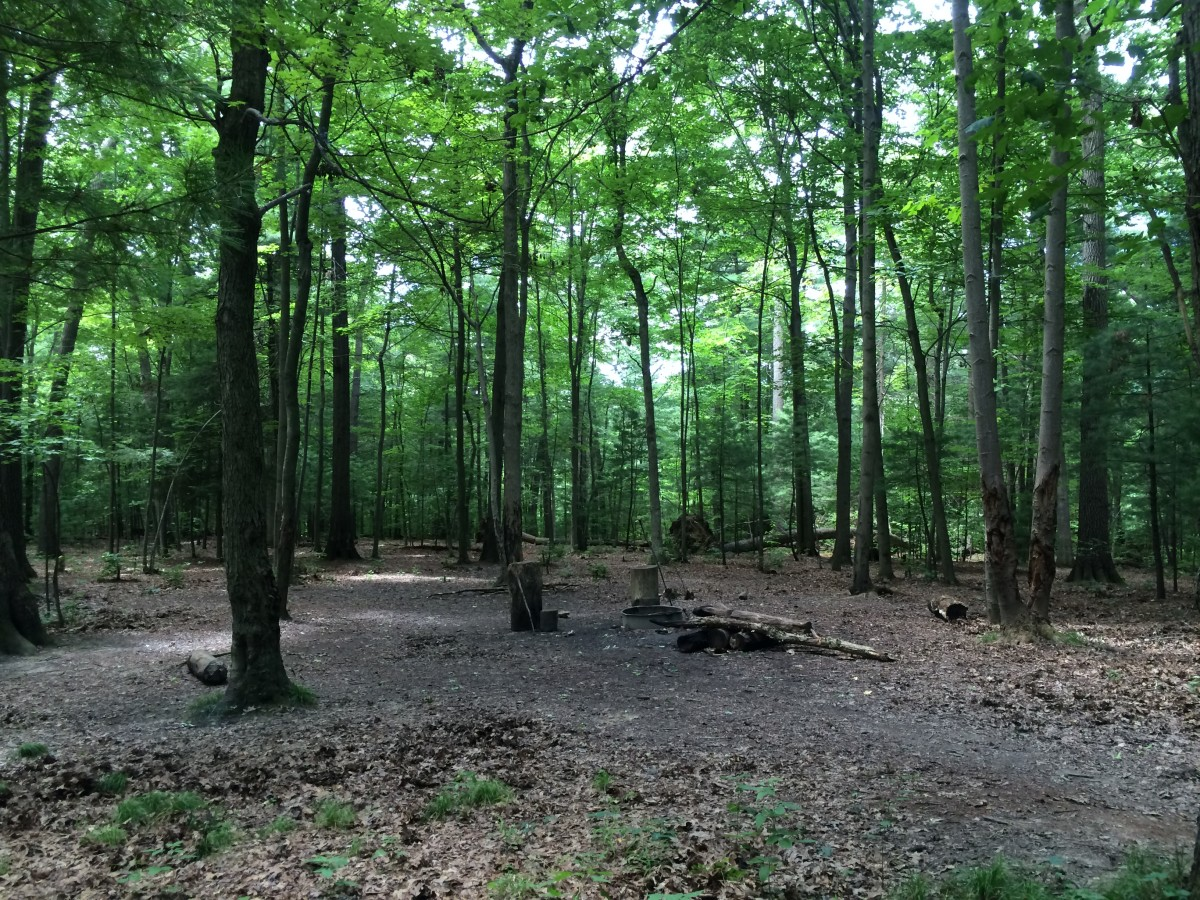 backpacking-through-mohican-state-forest