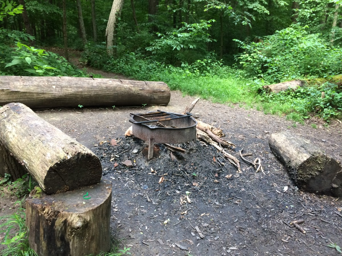 Main area and fire pit, Site 8