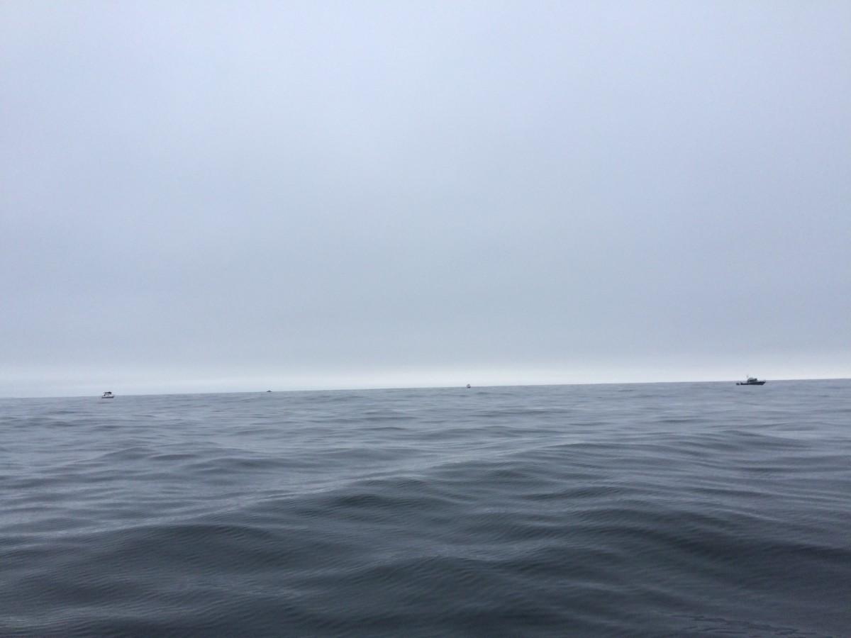 Stead seas, even offshore.