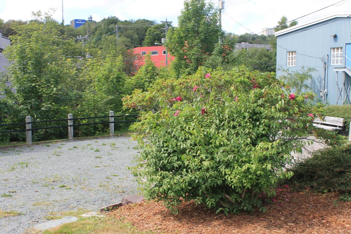 Site of the Original Mile 0.