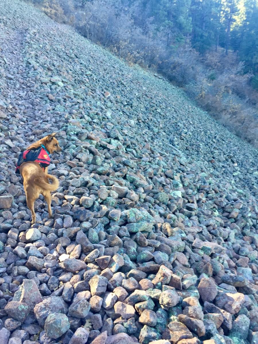 Ella had little issue on the rockslide