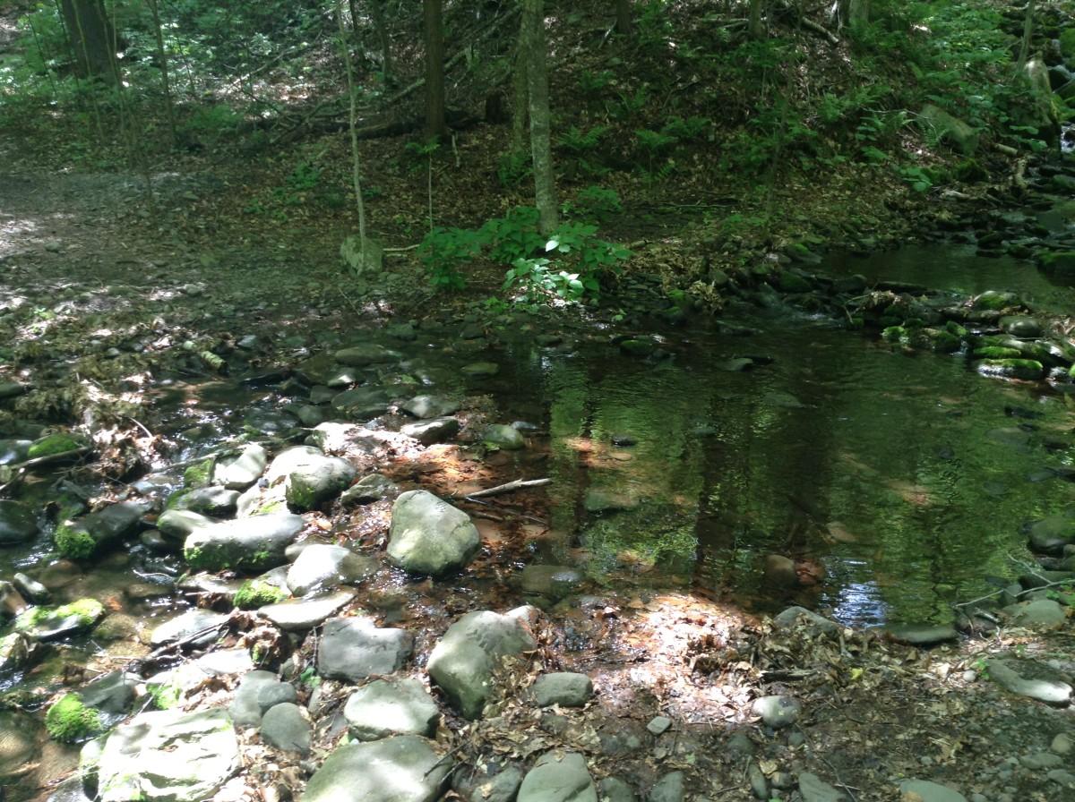 Stream Crossings