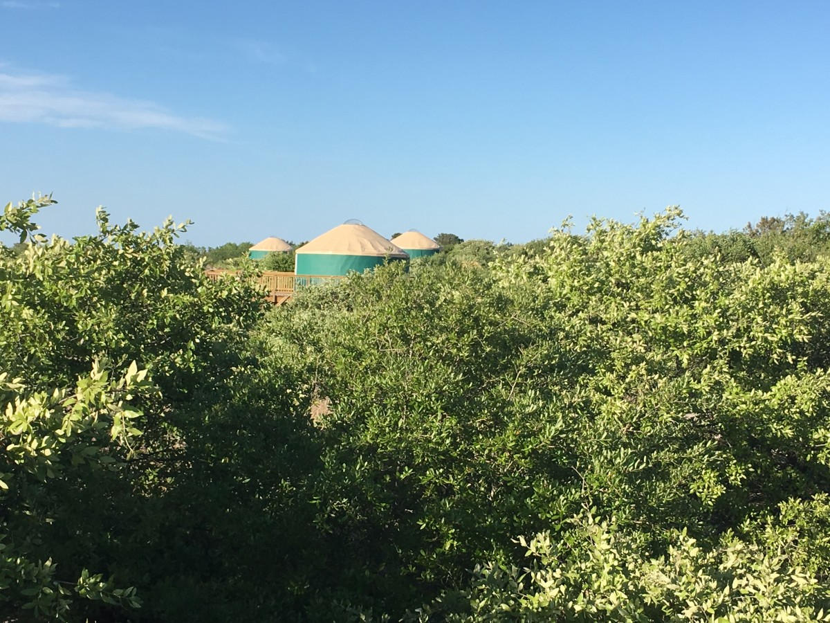 From the boardwalk to the beach you could see some of the yurts. They look like they have excellent views.