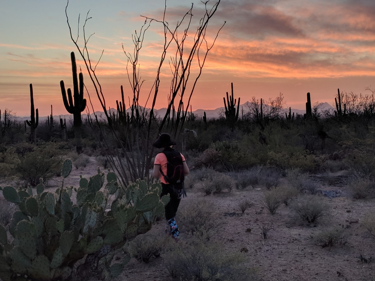 My wife heading toward a looming Saguaro, camera in hand and ready to capture a sunset.