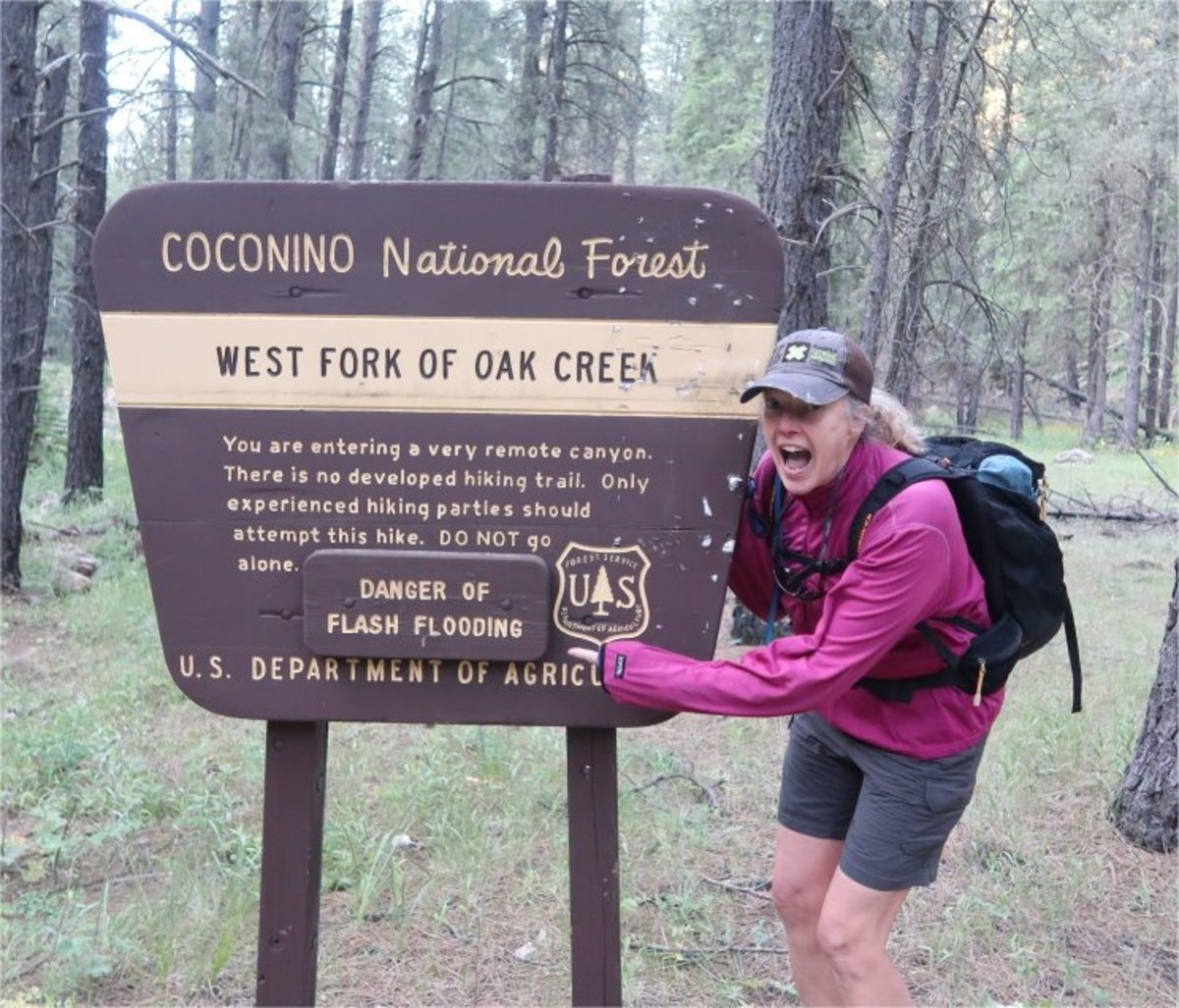 thru-hiking-the-west-fork-canyon-of-oak-creek-canyon
