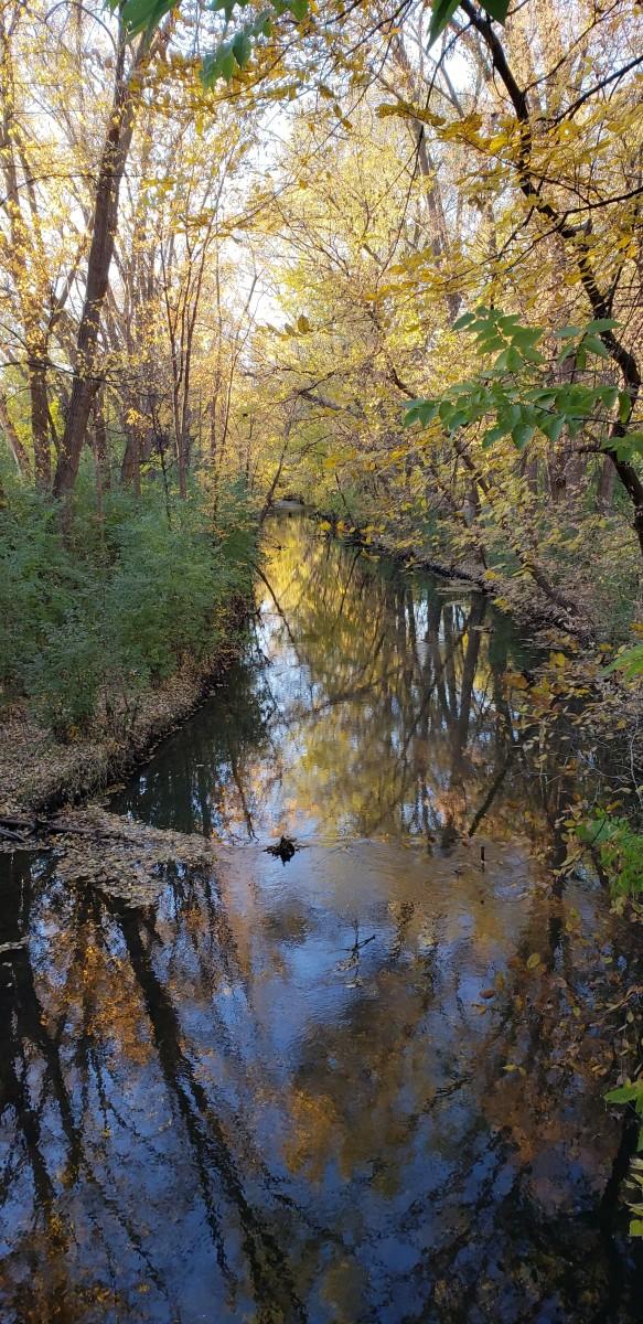 Taken on an autumn run along Shingle Creek in Minneapolis, Minnesota.