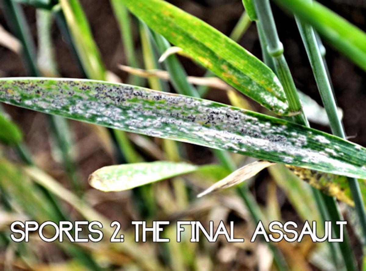 Spores: The Final Assault 5