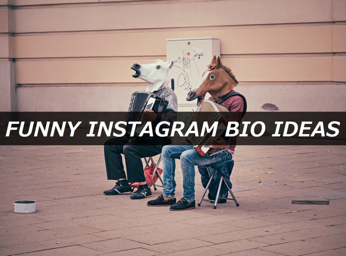 150+ Funny Instagram Bio Ideas