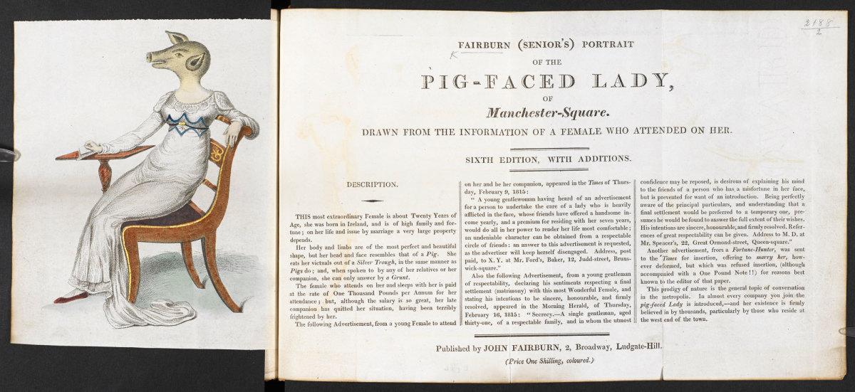 the-legend-of-pig-faced-women