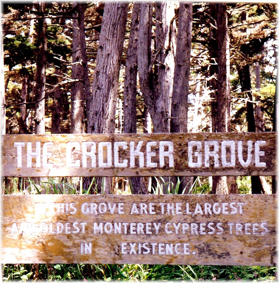 Crocker Grover sign - 17 Mile Drive