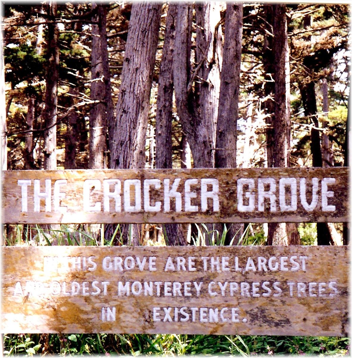 Crocker Grover sign - 17 Mile Drive