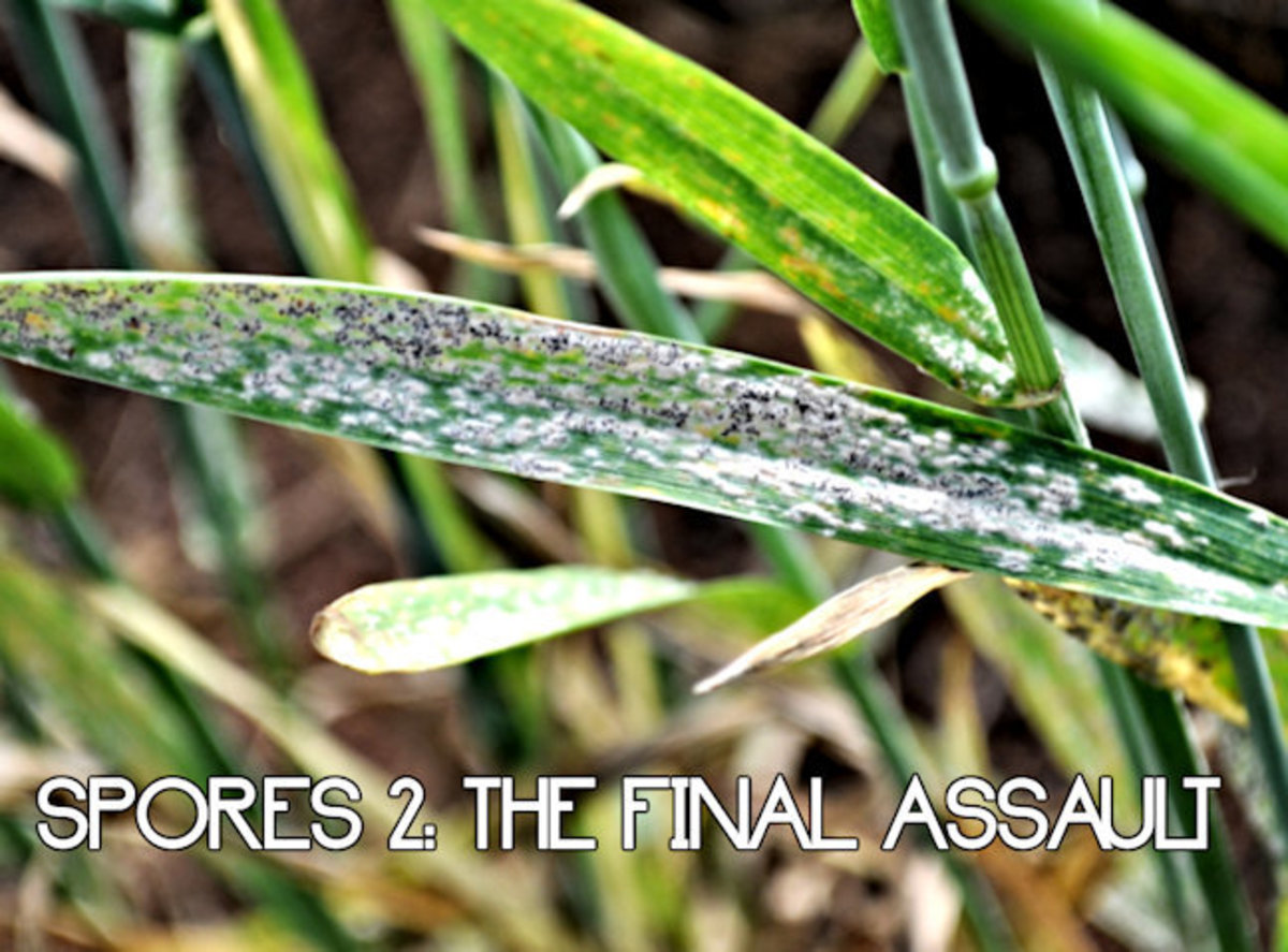 Spores: The Final Assault 9