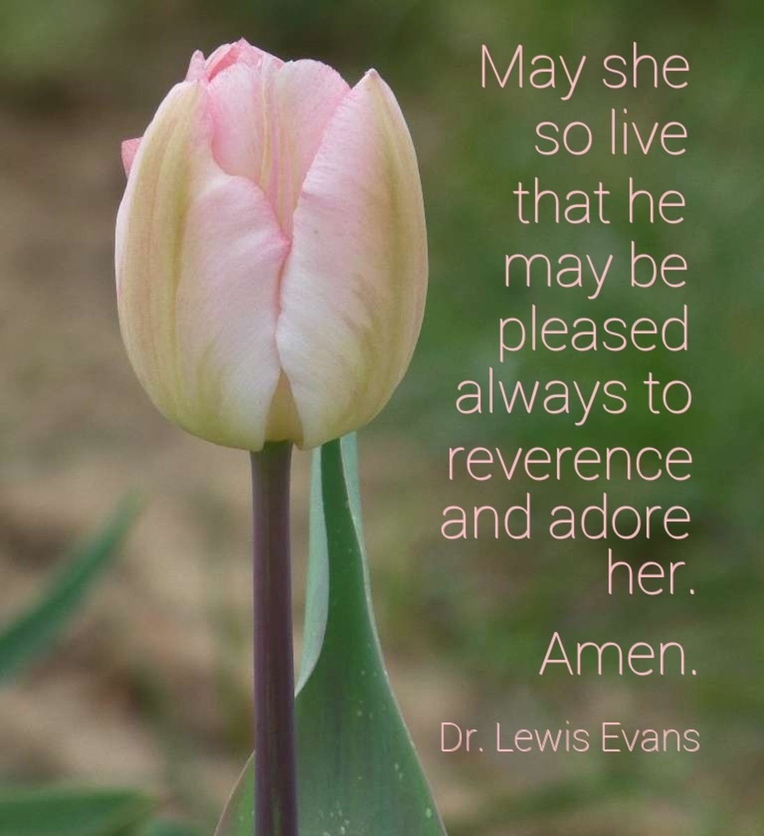 May she so live that he may be pleased always to reverence and adore her. Amen.