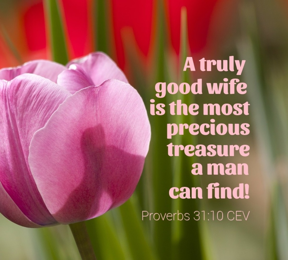 A truly good wife is the most precious treasure a man can find!
