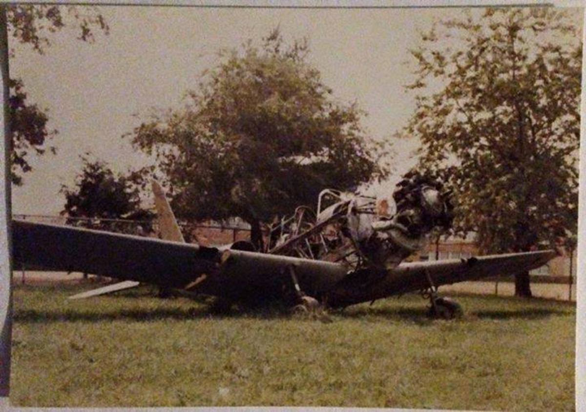 The actual Newbridge Inn plane after many years exposed to the elements and vandals. Photo credit: Stacey Duffin. Used with permission