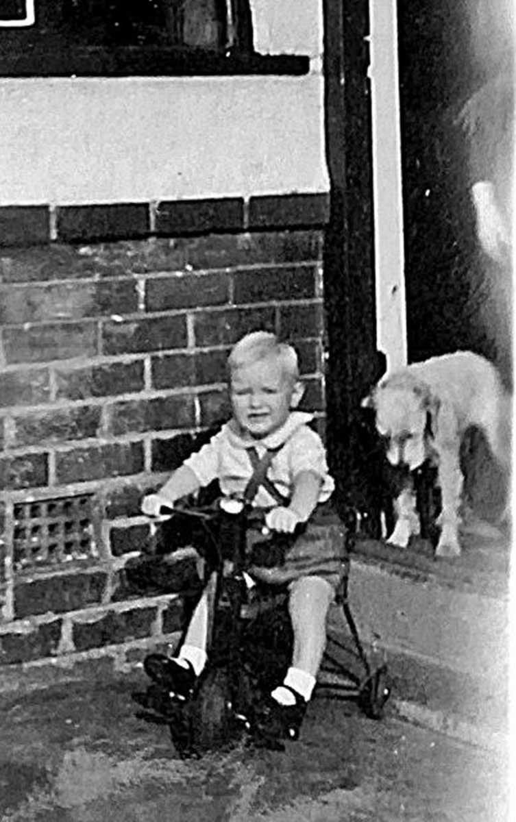 My brother's dog, Peggy, kept a watchful eye on him when he was a toddler learning to ride his bike.