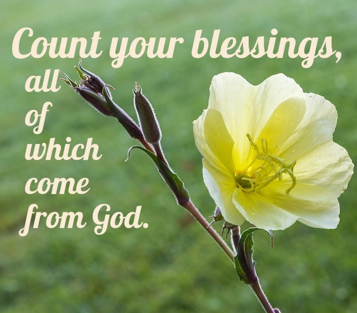 Count your blessings.