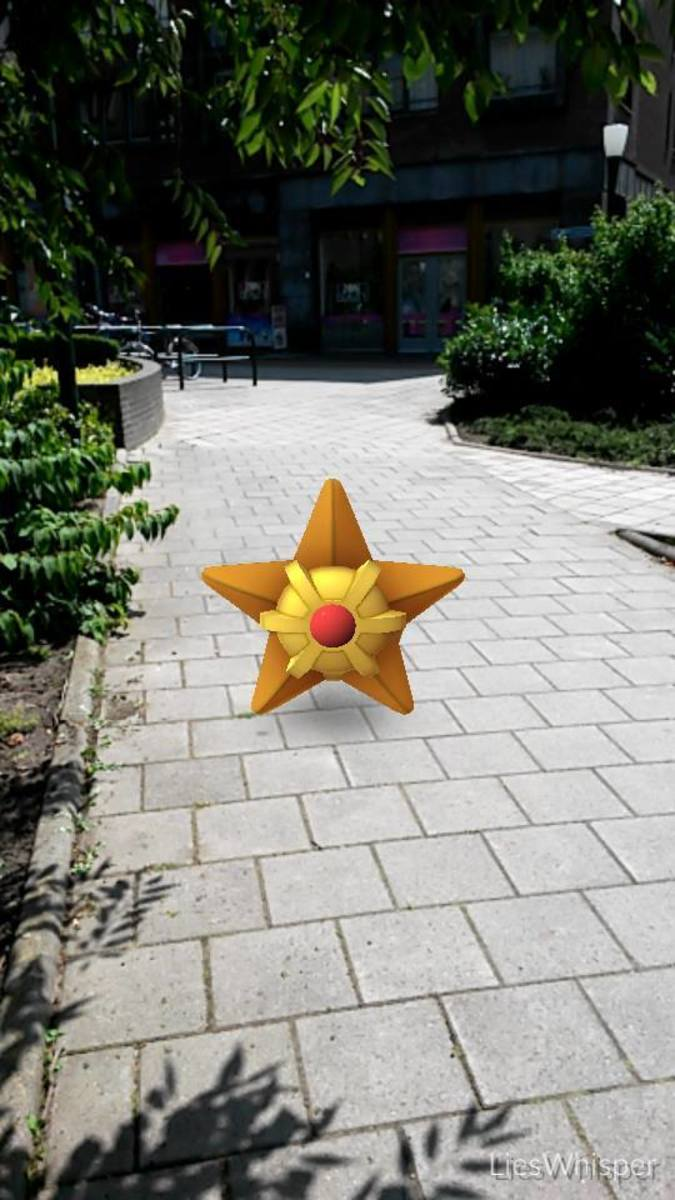 To find Starmie, or catch a lot of Staryu?