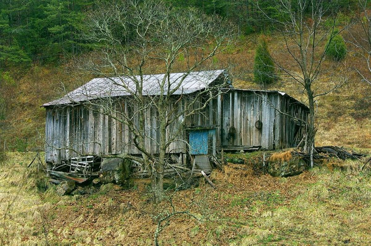 Our shack was very similar to this shack in Pigeon Forge, TN. Very similar.
