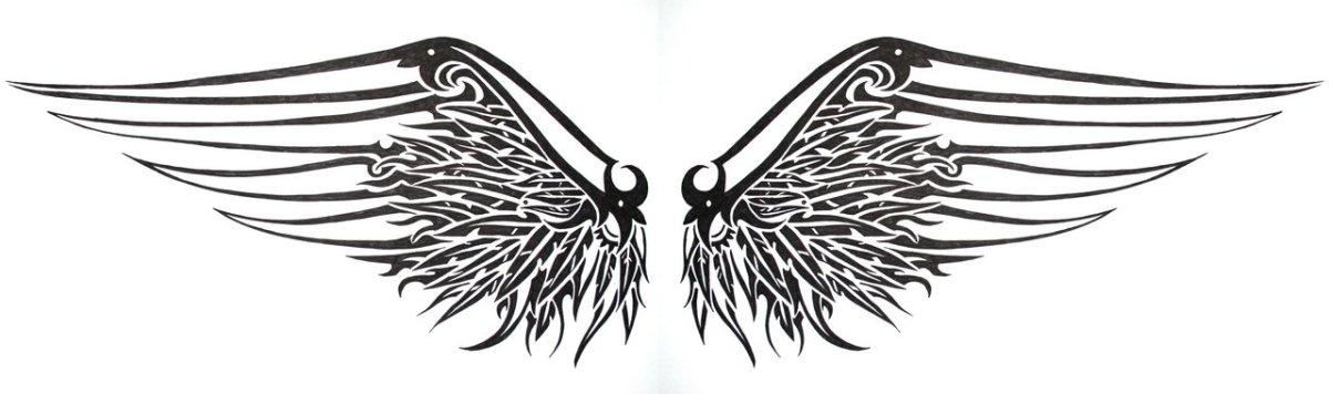 finding-wings