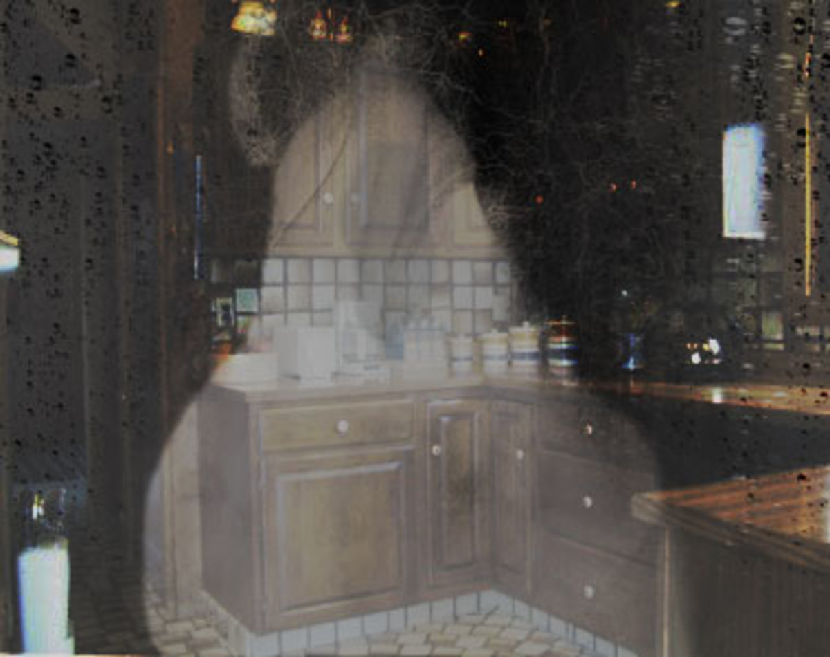 Of course this isn't real - It's my own kitchen with an overlay that I created it in Photoshop.  It closely resembles what it is we saw.  It was tall to us - we had to look up at it.