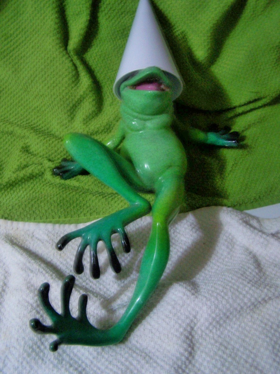 The frog receives his punishment...as if he cares...