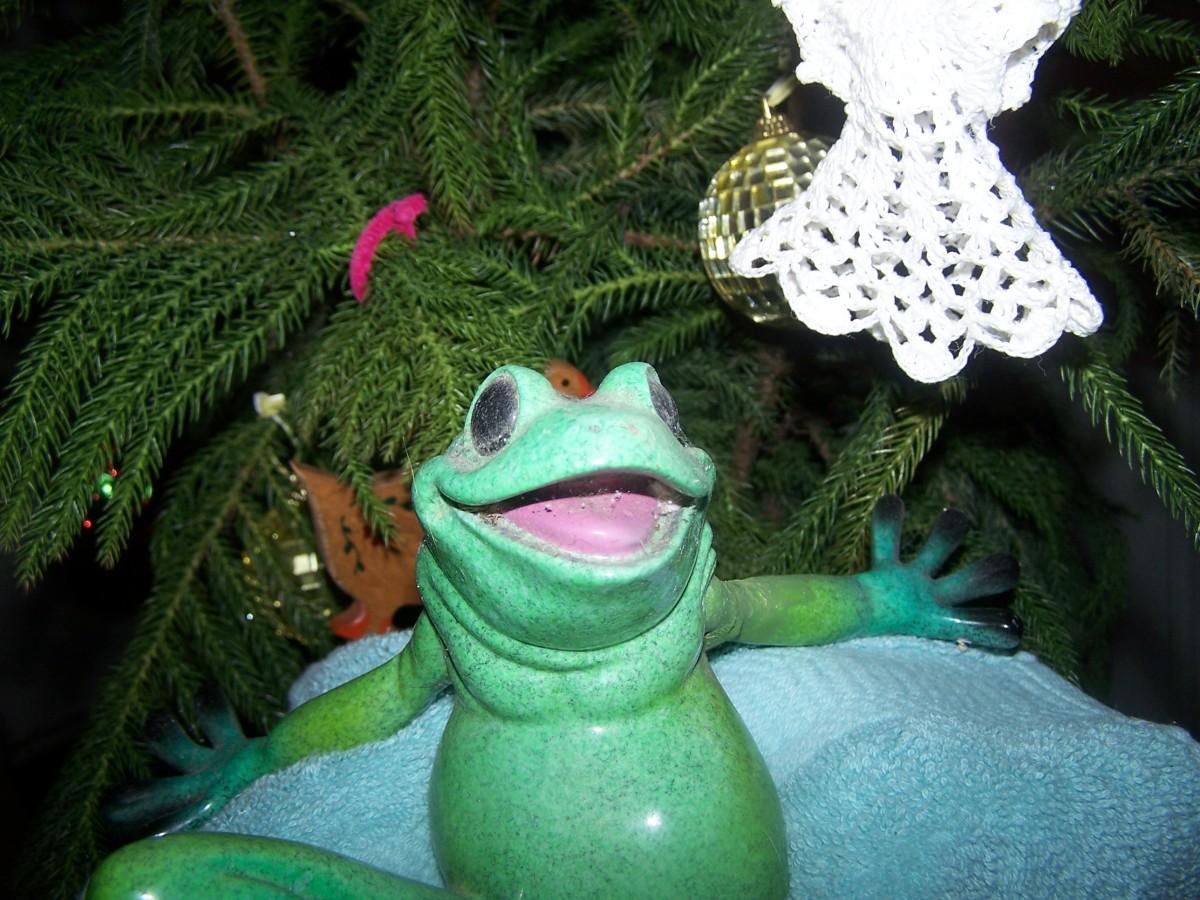 """Hello, I'm just a frog like you"", or"" I'm king of the swamp"""