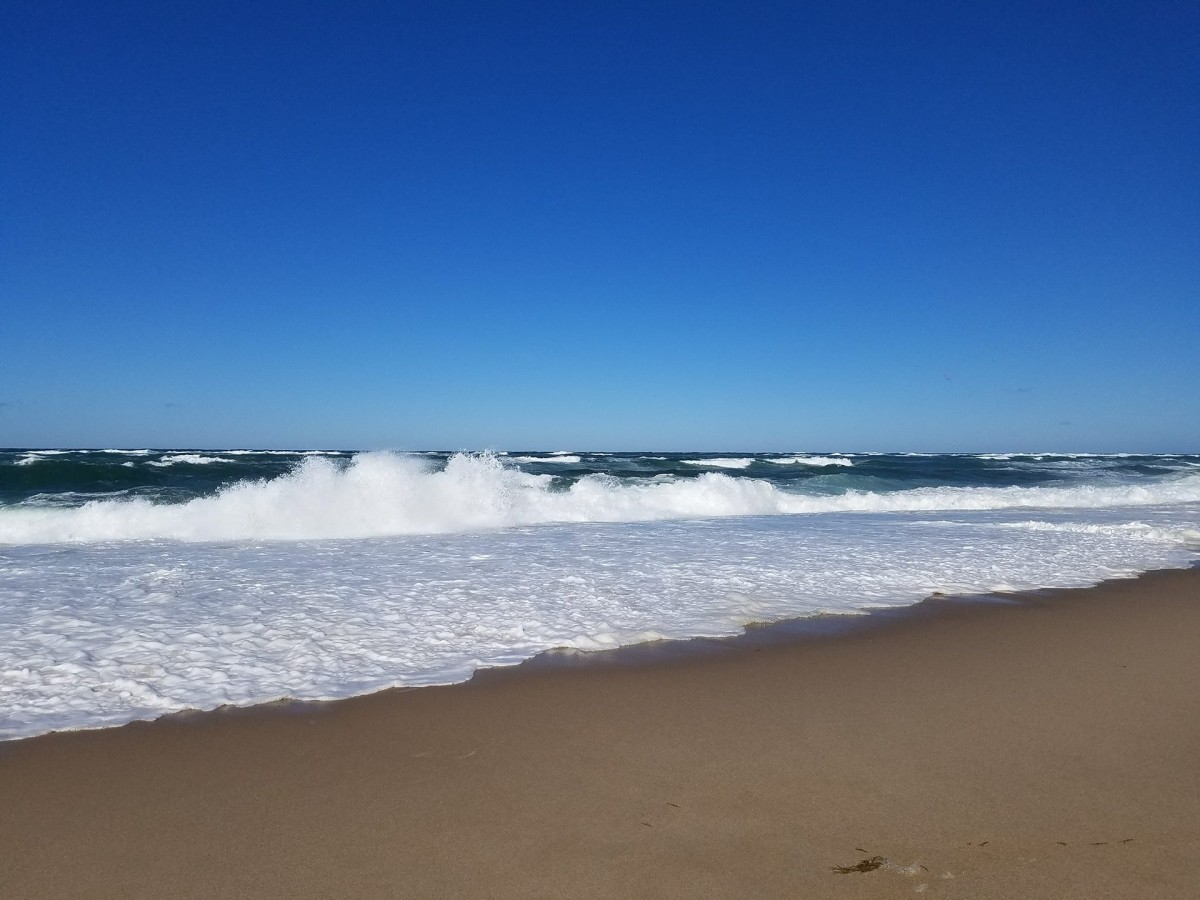 The roaring surf pounded rhythmically on the shore.