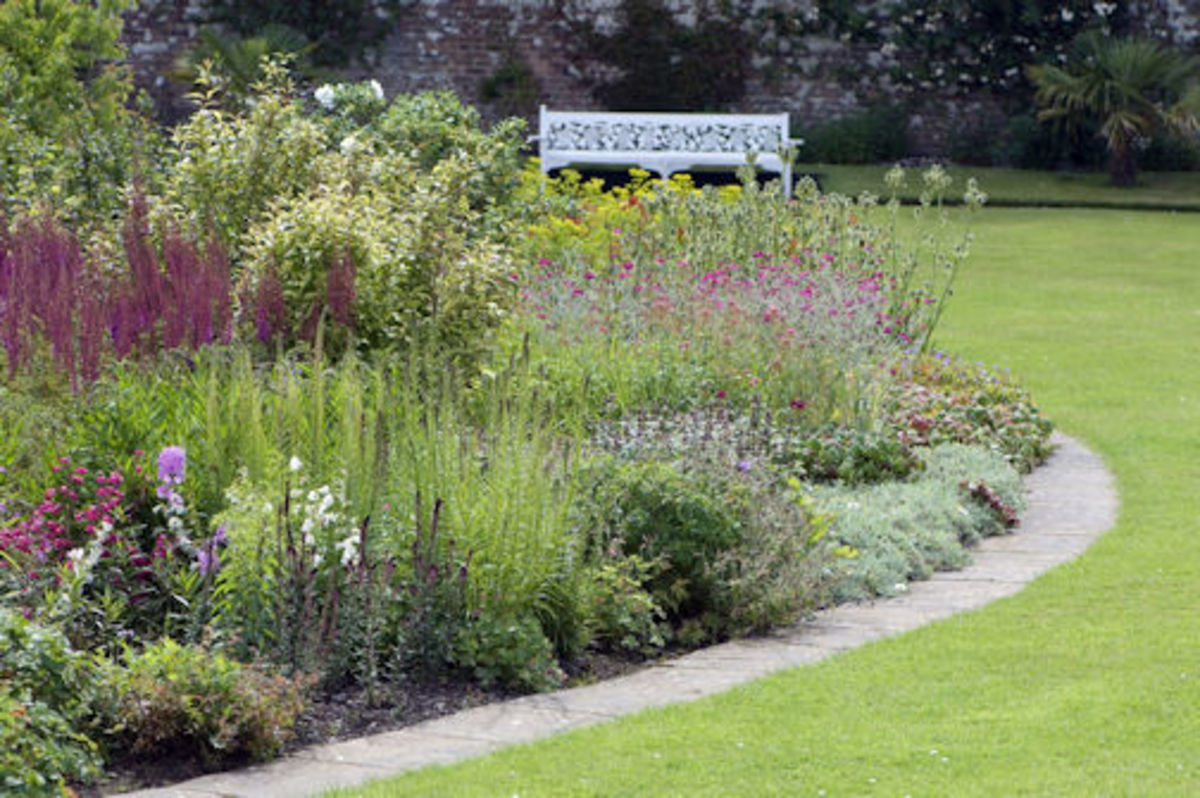 The Tranquil Gardens: a wonderful place to obtain peace!