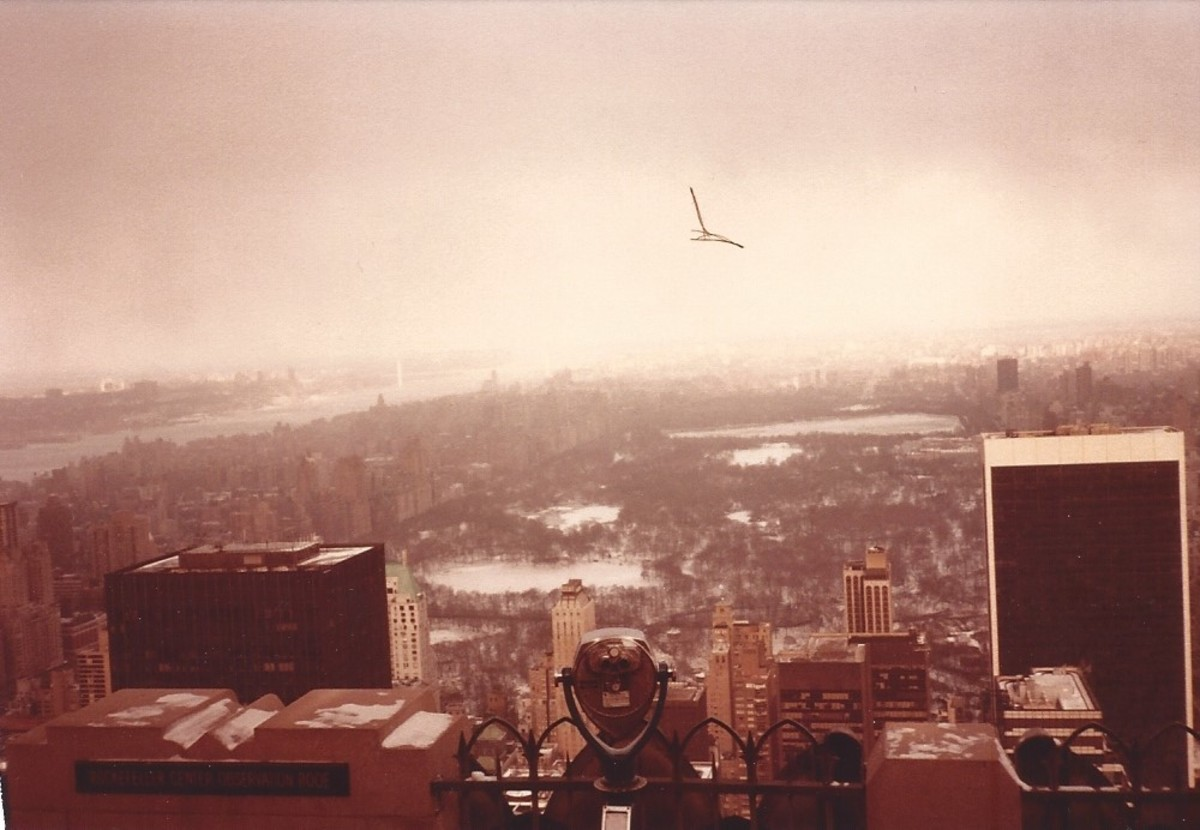 View of Central Park and uptown from the top of the RCA Building,