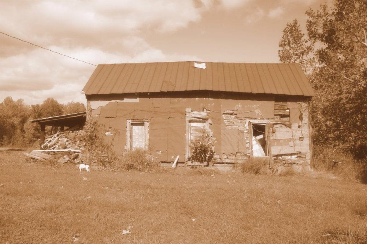 This old place is located next to my childhood home. It has been unoccupied since the early 1970s.