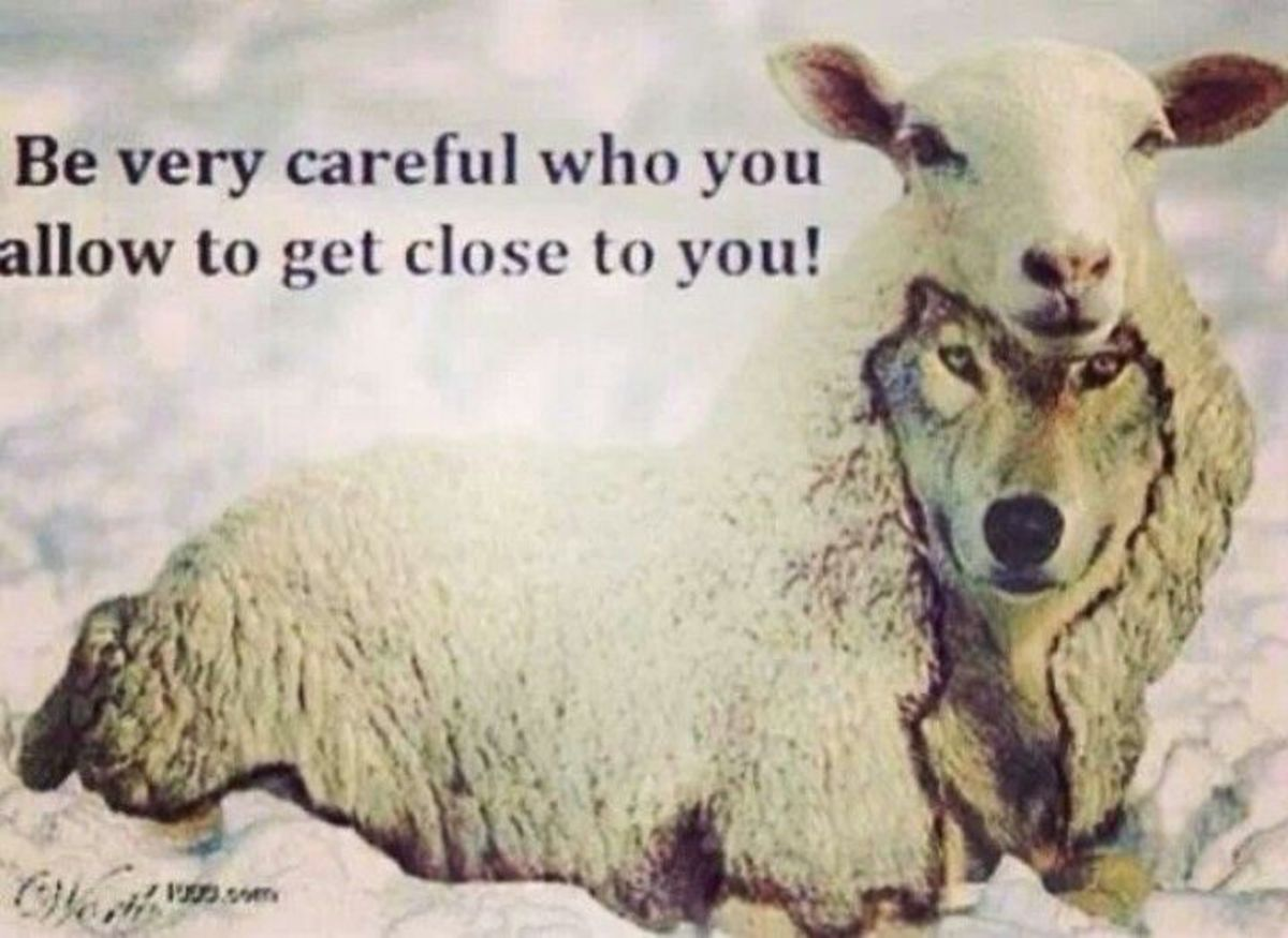 Beware of wolves in sheep clothing